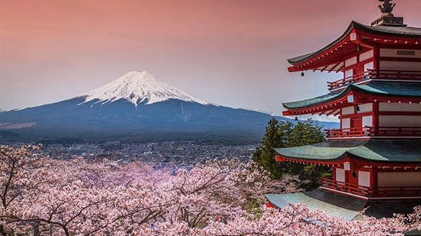 לימודי יפנית ביפן
