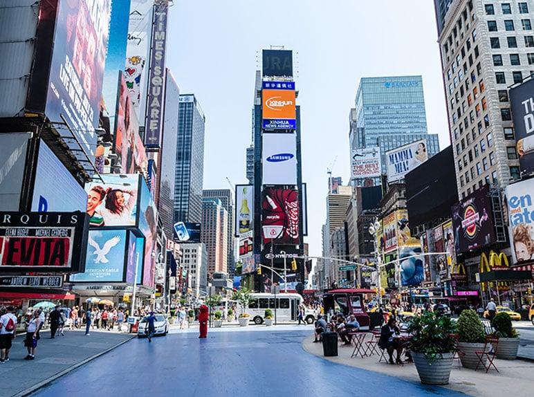 לימודים בניו יורק